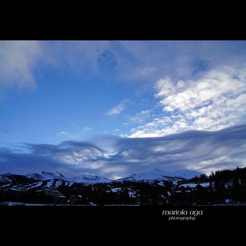 ... bluish winter