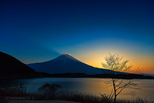 winter lake tree japan sunrise mtfuji 2013
