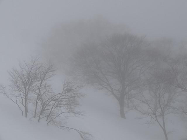 大日岳(2013.2 (7)