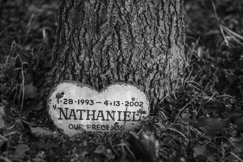 Markers - Nathaniel 1-28-1993 - 4-13-2002