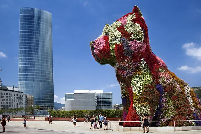 Puppy_Bilbao