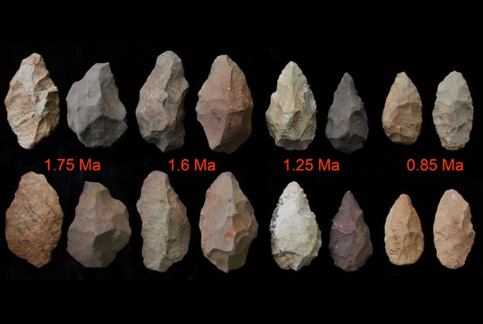 Ancient stone tools showing the pace of remarkable technological enhancements over time (1.75 to 0.85 million years ago). Credit, Los Alamos National Laboratory.