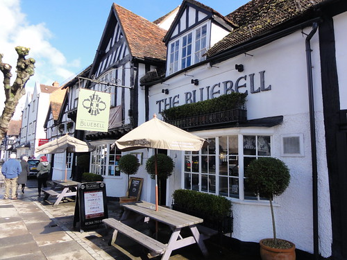 Blue Skies at the Bluebell