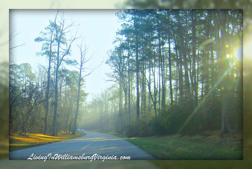 Parkway Morning
