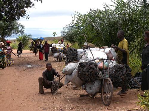 drc unfamily postconflict conflict disaster climatechange peacebuilding environment naturalresources charcoal unep unenvironment