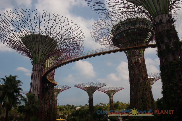 Your Singapore-387.jpg