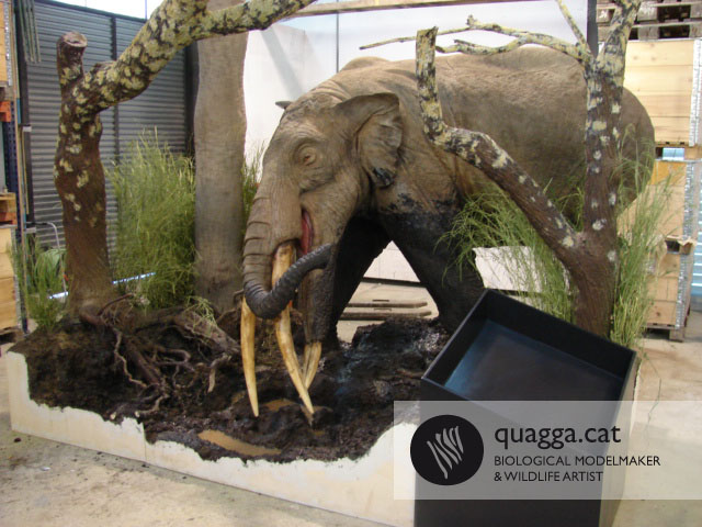 Gomphotherium   Flickr - Photo Sharing!