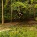 Nick - Aston Hill - Ender Sender