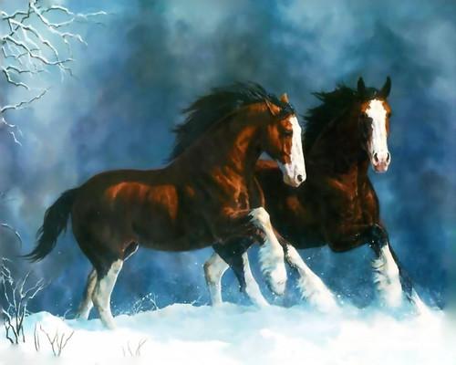 2 caballos en la nieve
