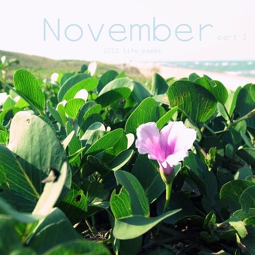 2012 Nov pt.2