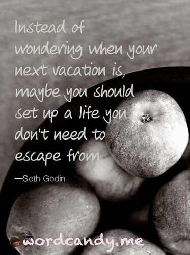 instead of wondering when your next vacation Seth Godin photo by Kelly Sauer