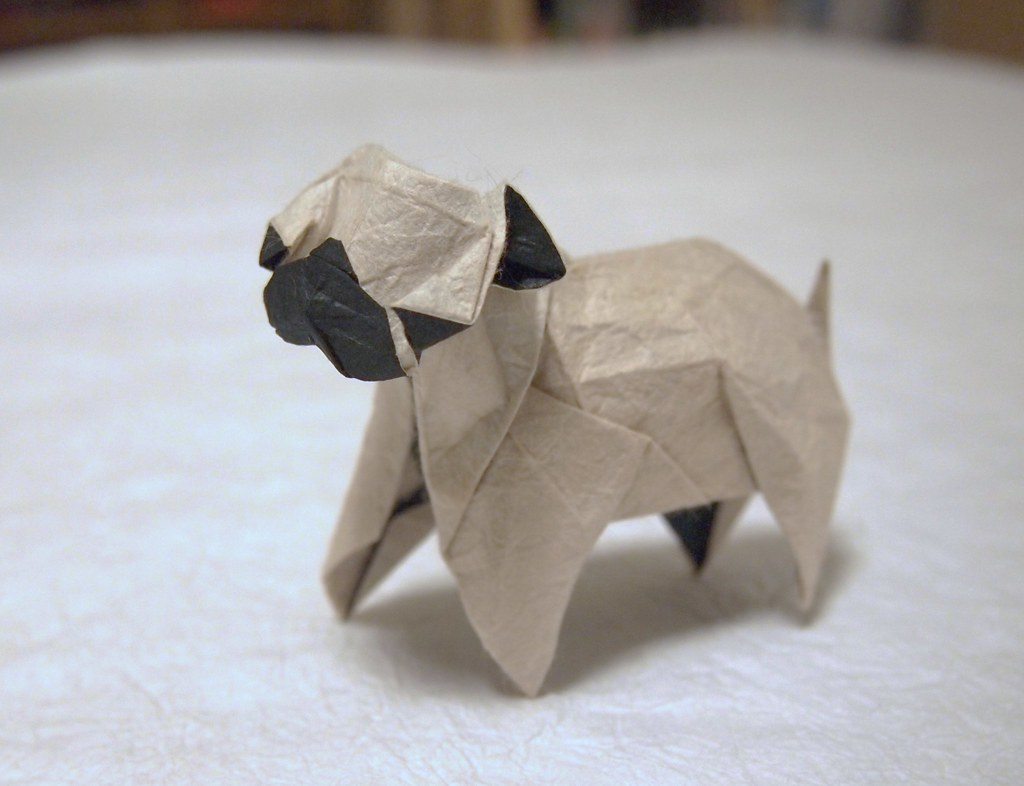 Osvaldo Diaz Fs Favorite Flickr Photos Picssr Labels Diagrams 3d Origami Chinese Dragon Instructions Pug