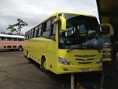 HB133 Hino Tacirua yellow