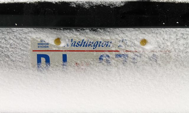 Snowin' in D.C.