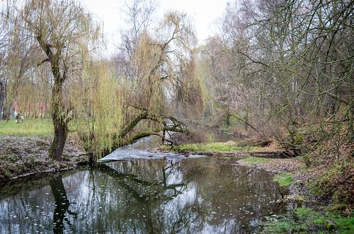 park leica nature natur ukraine x galicia x2 xseries ternopil природа парк україна galizien tarnopol галичина тернопіль leicax2 ternopilskaoblast leicax2gallery