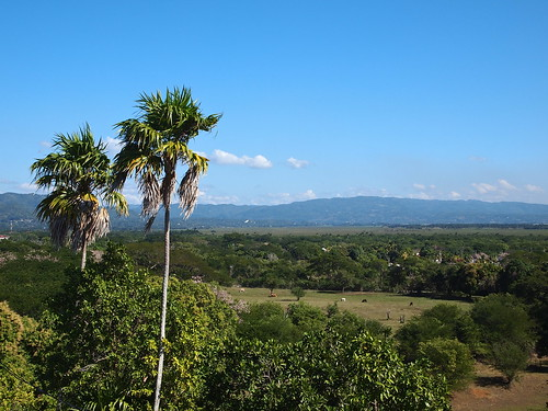 landscape scenery day view clear jamaica blackriver caribbean stelizabeth westindies ashtongreathouseandhotel