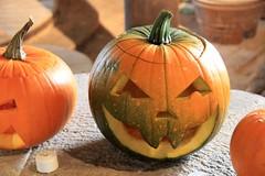 carving(0.0), vegetable(1.0), pumpkin(1.0), calabaza(1.0), produce(1.0), food(1.0), winter squash(1.0), jack-o'-lantern(1.0), cucurbita(1.0), gourd(1.0),