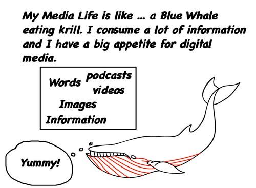 medialife