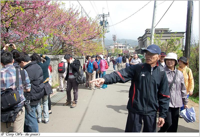 2013-02-03 平菁街-11