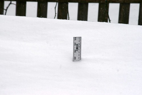 yard stick - 32.5 inches of snow 084