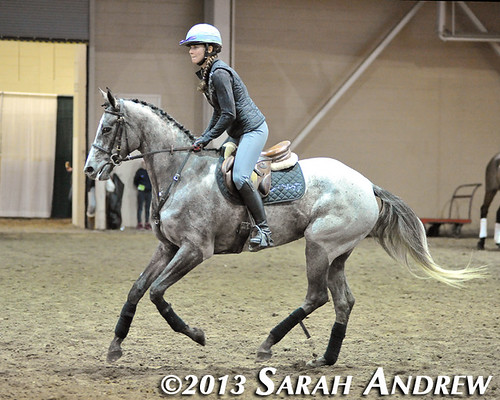 Gunport and Michelle Warro at the PA Horse World Expo