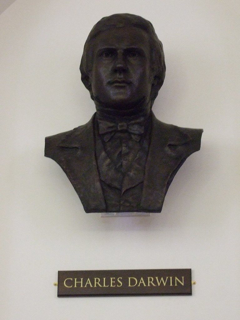 Anthony Smith, Charles Darwin bust 2009