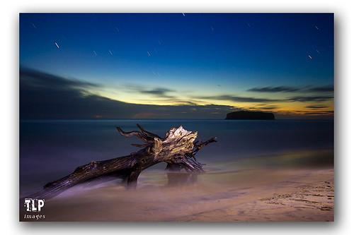 tree beach sunrise washedup startrails shellharbour justclouds killaleastatepark mysticsbeach facebookcomimagestlp imagestlp