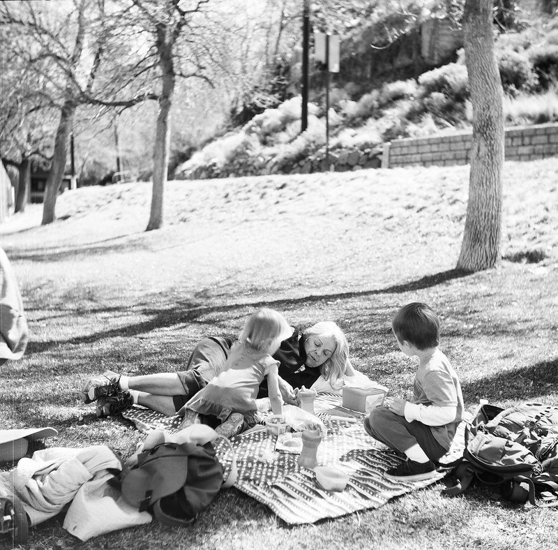 pic-a-nic| Yashica LM | Lomography Black and White 120 | Vanessa Simpson