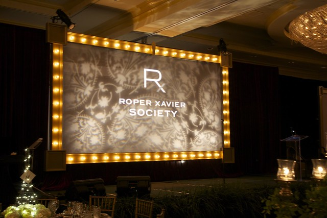 Screen Surround-Marquee Lighting 9'x16'-Gold