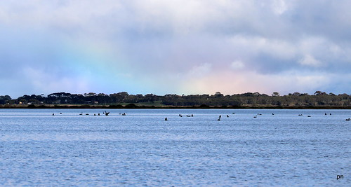 pnaudi posted a photo:Lake Connewarre- rainbow trying to happen