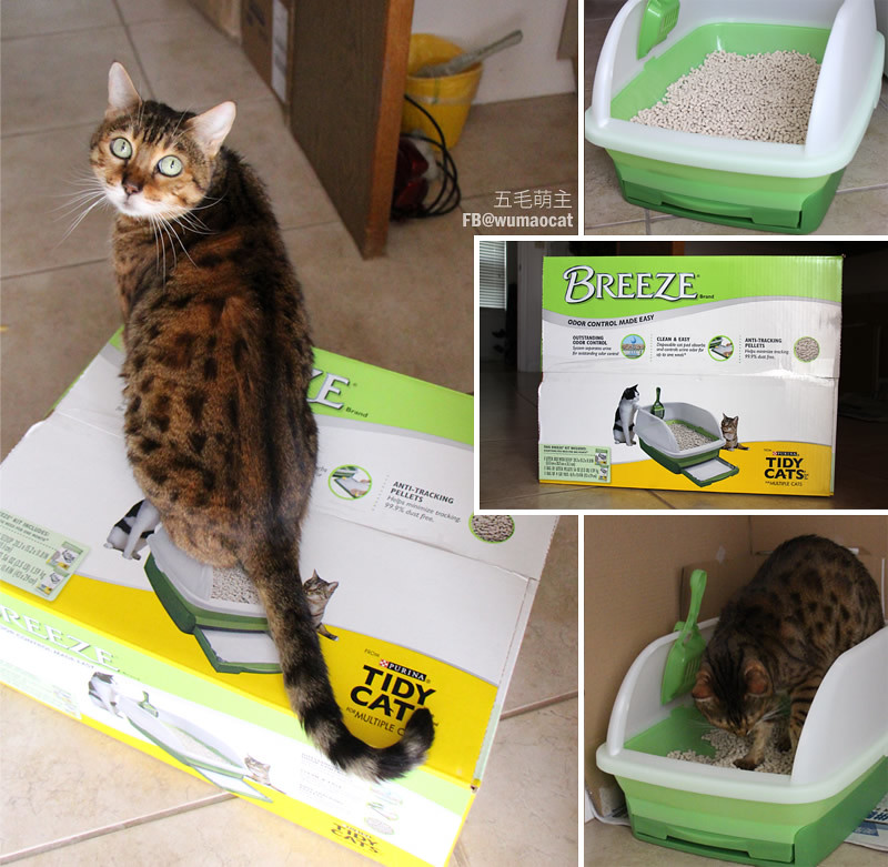 purina,tidy cats,tidycats,breeze,litter,貓砂,砂盆,貓奴,貓咪,便盆