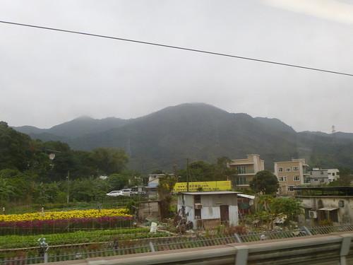 Shenzhen13 (23)