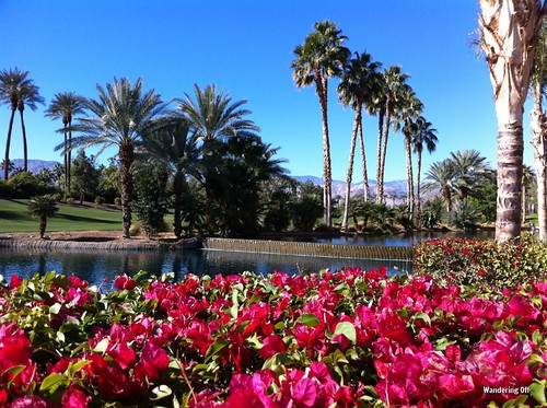 Beautiful grounds at the Renaissance Esmeralda in Indian Wells