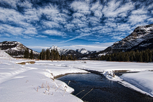 Soda Butte Creek