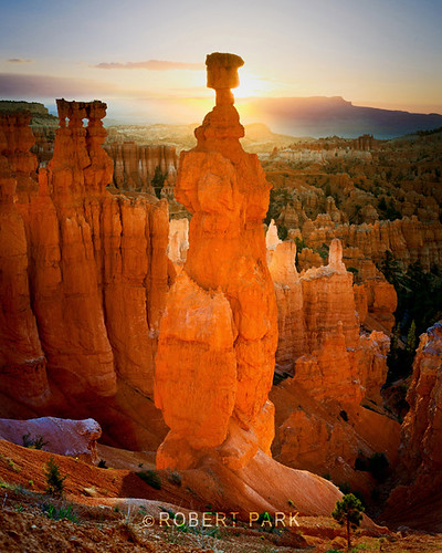"""First Light  Bryce Canyon National Park, Utah ""By Robert Park  http://www.robert-park.com by Robert Park Photography"