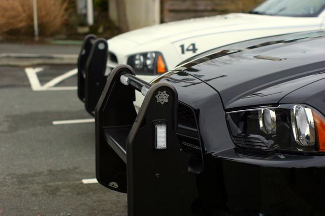 Medina Police