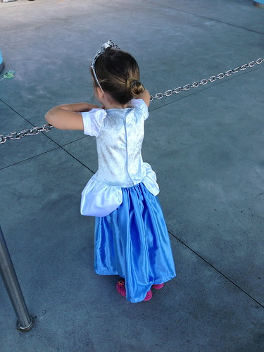 Cinderella Dress - back