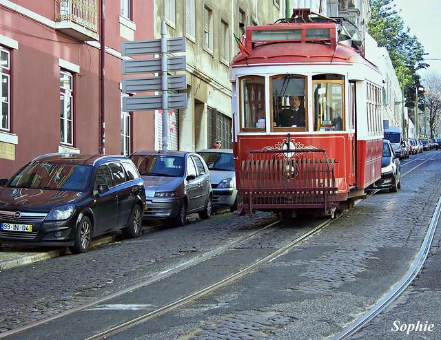 Lisbon Trunk