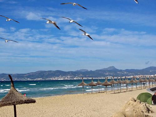 2013 Strand von Arenal