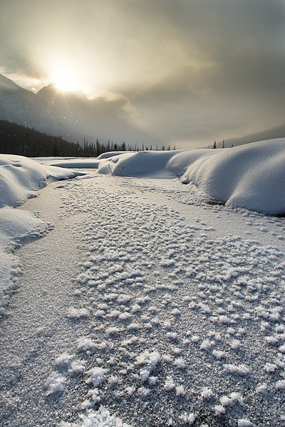 Mount Wilson at Graveyard Flats in winter - Banff National Park Alberta Canada