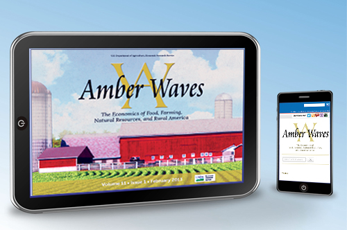 Readers of ERS's Amber Waves can now access the magazine offline via a mobile app that is free to download on iPads and Android  tablets (left) – without internet or cellular connection. And the Internet edition of Amber Waves configures automatically to fit tablets or other mobile devices.