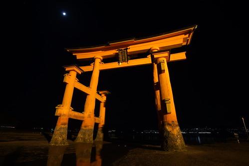 厳島神社 大鳥居 ライトアップ