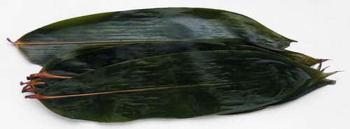 bamboeblad weken