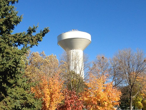 trees fallcolors watertower bluesky moundsview