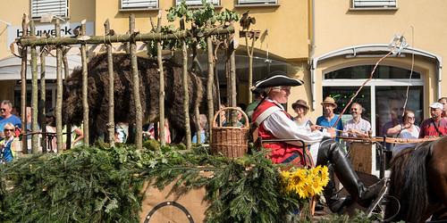 2016_09_11_Kreisj+ñgervereinigung_Mergentheim_Landesfestumzug_Bad_Mergentheim-3