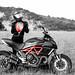 Ducati Diavel 2011 by KosmoDesign