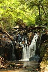Olinda Falls (lower)