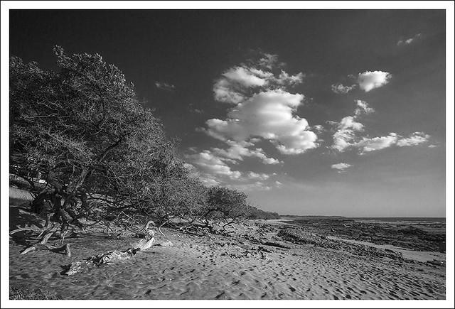 Langosta Beach 8