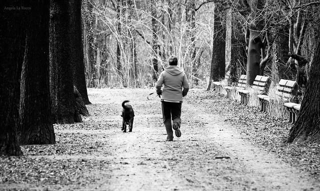 Ein Spaziergang mit Hund kann schon ...