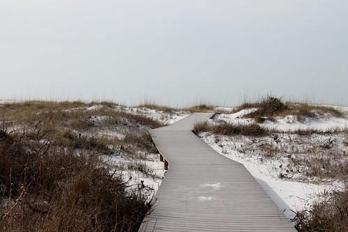 Dune boardwalk